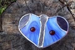 papillon vitrail bleu céleste